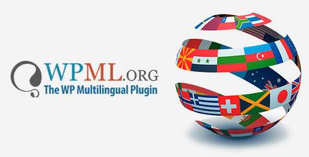 دانلود افزونه چند زبانه کردن سایت WPML
