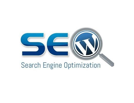 سئو سایت وردپرس چیست؟