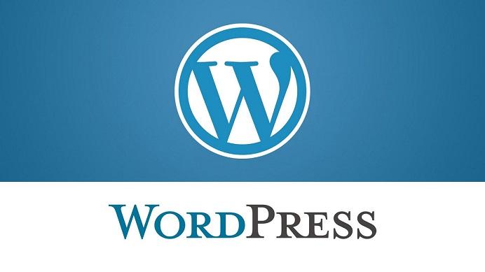 طراحی سایت وردپرس چیست؟