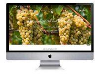 طراحی سایت شرکتی تاپ نهال